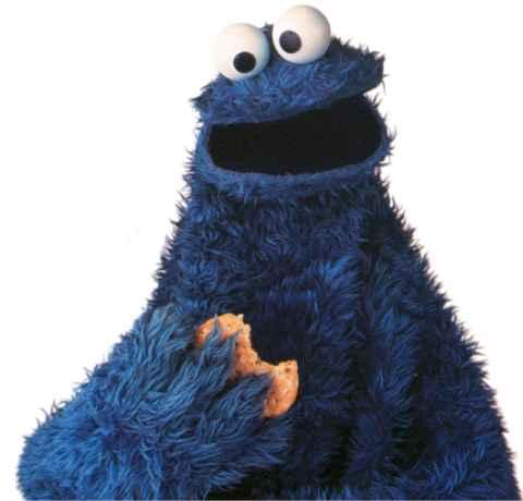 Cookie Monster in happier days